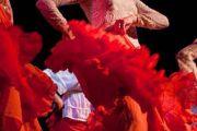 NOUVEAU : cours de flamenco